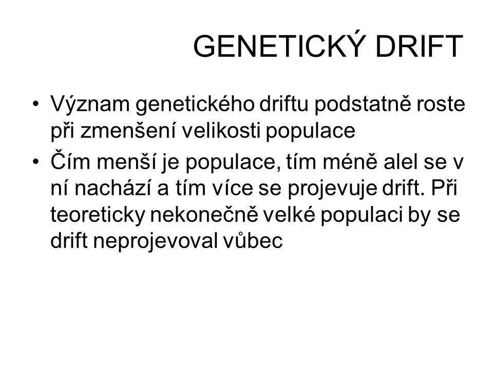 GENETICKÝ DRIFT •Význam genetického driftu podstatně roste při zmenšení velikosti populace •Čím menší je populace, tím méně alel se v ní nachází a tím