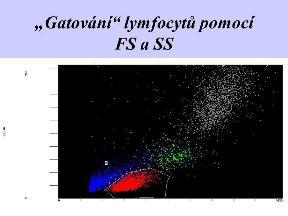 """"""" Gatování"""" lymfocytů pomocí FS a SS"""
