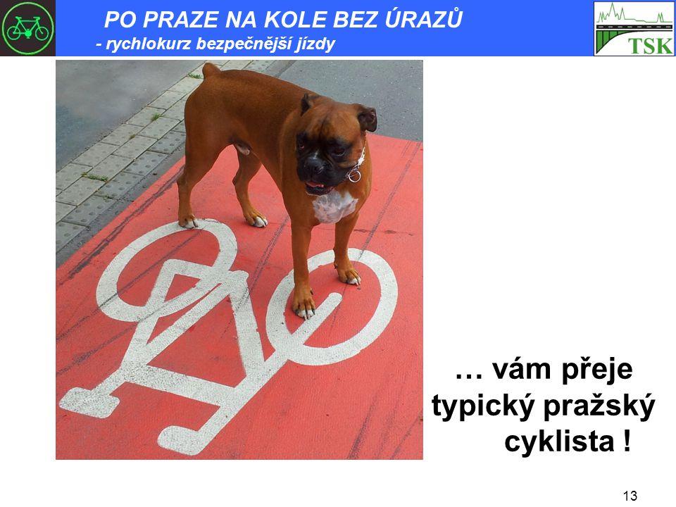 13 … vám přeje typický pražský cyklista ! PO PRAZE NA KOLE BEZ ÚRAZŮ - rychlokurz bezpečnější jízdy