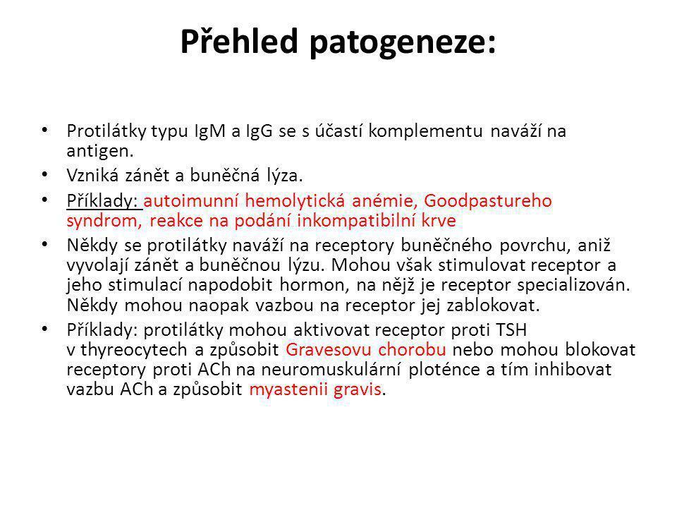 Přehled patogeneze: • Protilátky typu IgM a IgG se s účastí komplementu naváží na antigen. • Vzniká zánět a buněčná lýza. • Příklady: autoimunní hemol