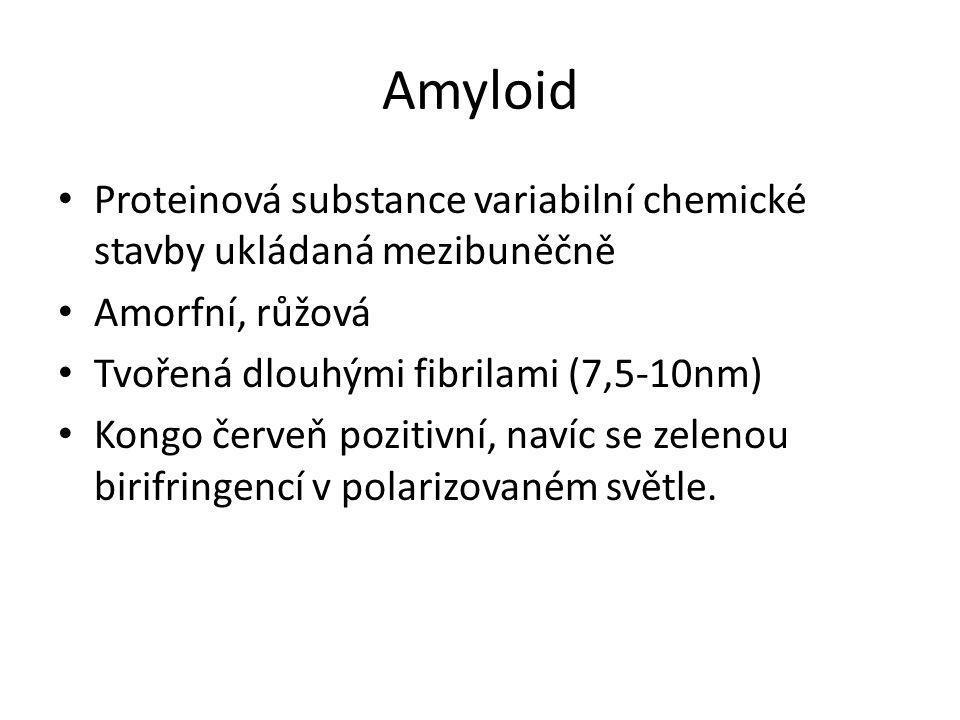 Amyloid • Proteinová substance variabilní chemické stavby ukládaná mezibuněčně • Amorfní, růžová • Tvořená dlouhými fibrilami (7,5-10nm) • Kongo červe