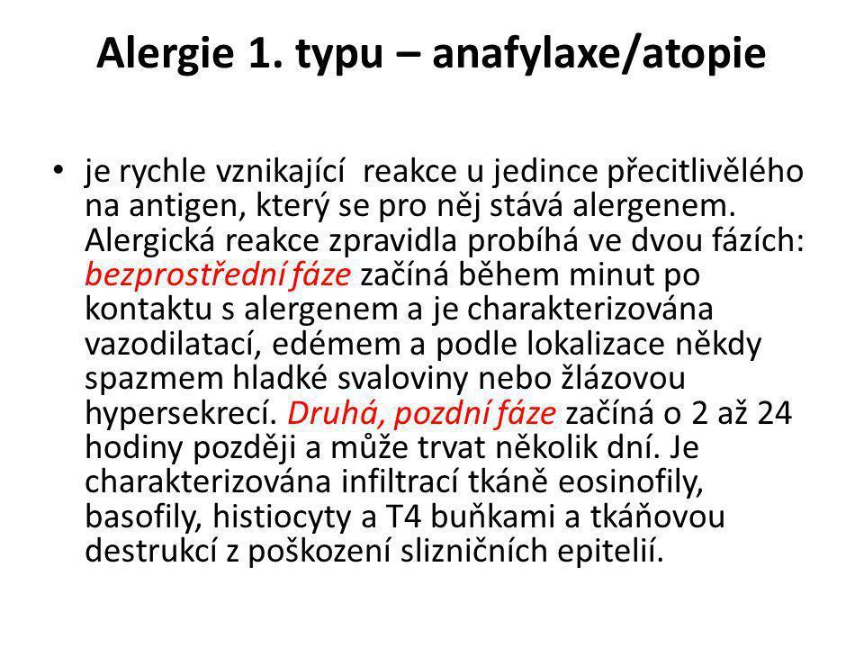 Alergie 1. typu – anafylaxe/atopie • je rychle vznikající reakce u jedince přecitlivělého na antigen, který se pro něj stává alergenem. Alergická reak