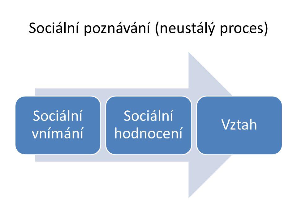 Sociální poznávání (neustálý proces) Sociální vnímání Sociální hodnocení Vztah