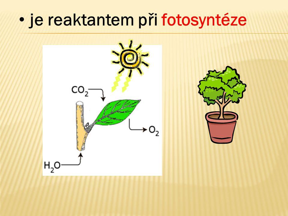 • je reaktantem při fotosyntéze