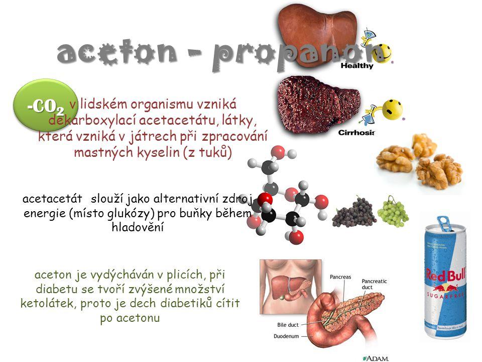 -CO 2 v lidském organismu vzniká dekarboxylací acetacetátu, látky, která vzniká v játrech při zpracování mastných kyselin (z tuků) aceton - propanon a