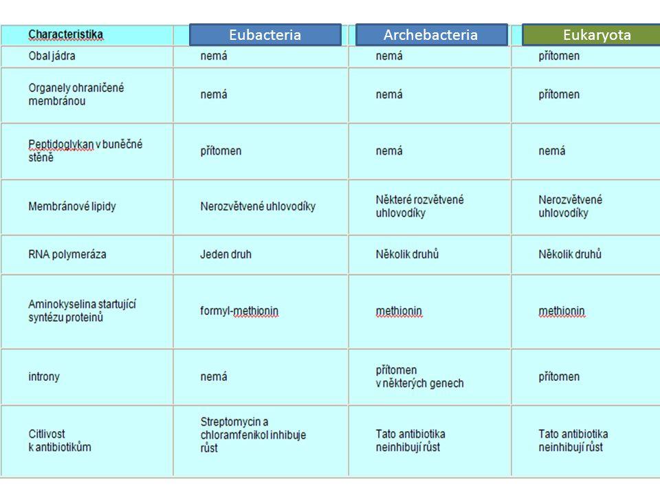 EubacteriaArchebacteriaEukaryota