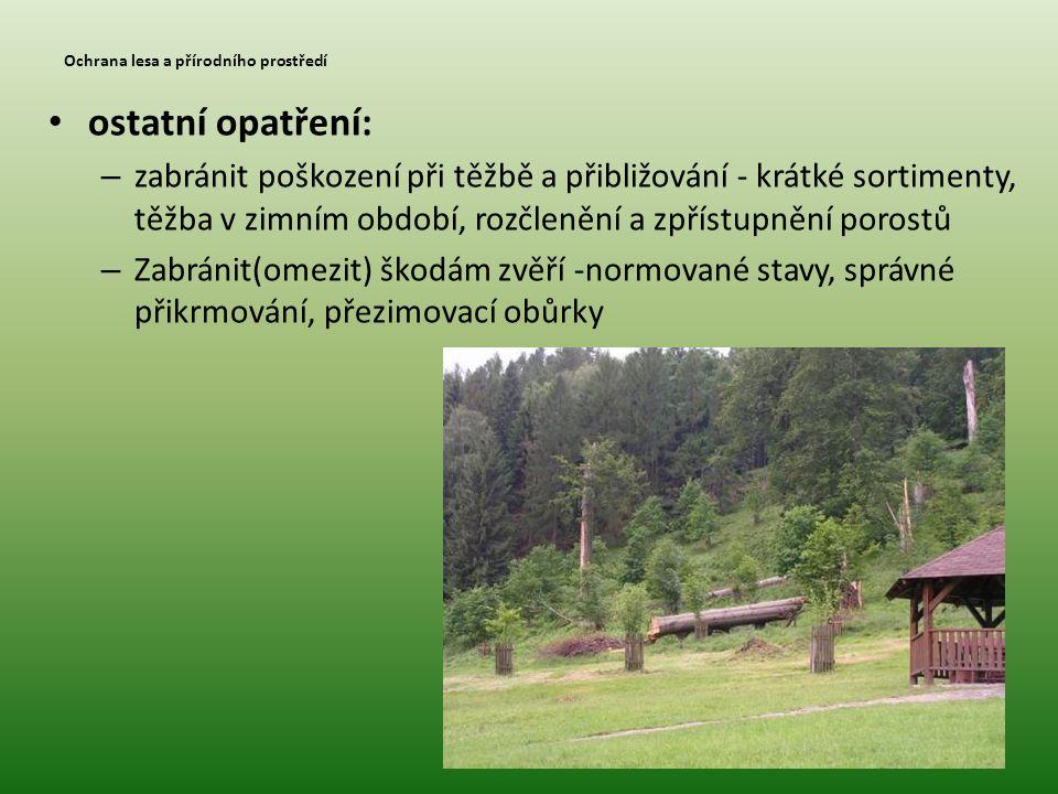 Ochrana lesa a přírodního prostředí • ostatní opatření: – zabránit poškození při těžbě a přibližování - krátké sortimenty, těžba v zimním období, rozč