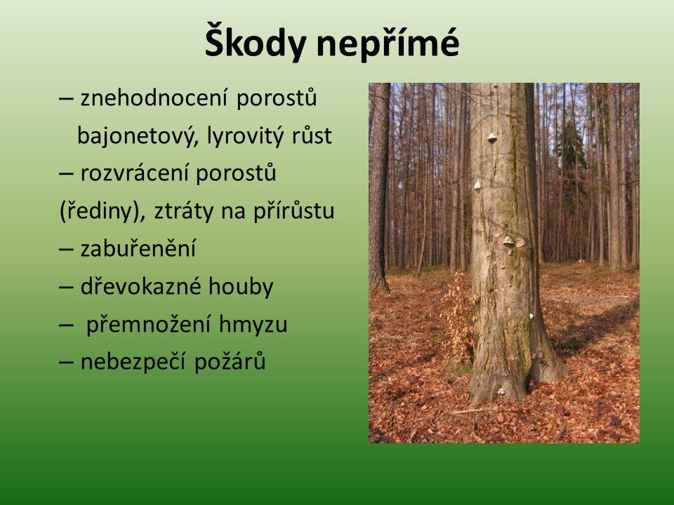 Škody nepřímé – znehodnocení porostů bajonetový, lyrovitý růst – rozvrácení porostů (řediny), ztráty na přírůstu – zabuřenění – dřevokazné houby – pře
