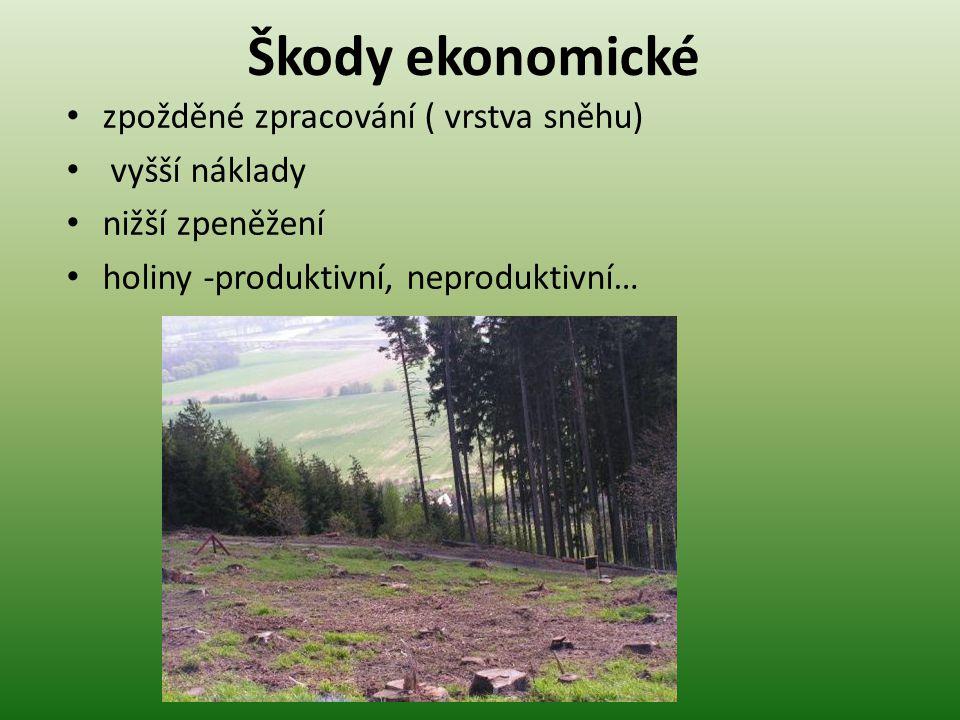 """Ochrana lesa a přírodního prostředí • Příznivý účinek sněhu: • dobré izolační vlastnosti • ( 20 cm sněhu - při –5 °C nepromrzne půda) • chrání kořeny před promrznutím a tím před přetrháním • semenáčky a sazenice před vymrzáním, """"vytahováním ."""