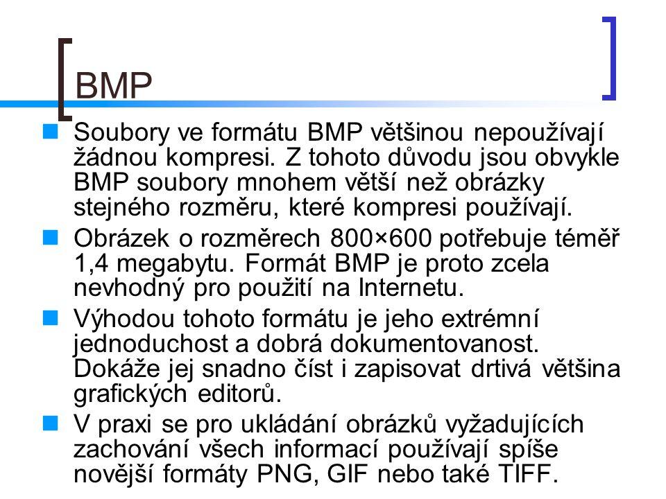 BMP  Soubory ve formátu BMP většinou nepoužívají žádnou kompresi.