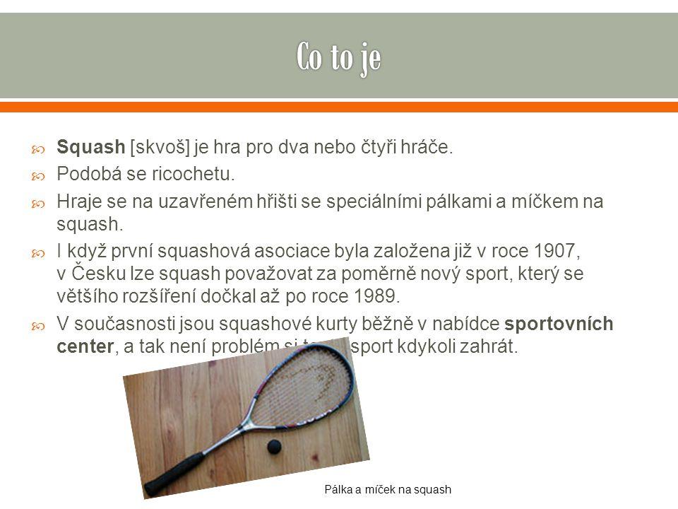  Squash [skvoš] je hra pro dva nebo čtyři hráče.  Podobá se ricochetu.  Hraje se na uzavřeném hřišti se speciálními pálkami a míčkem na squash.  I