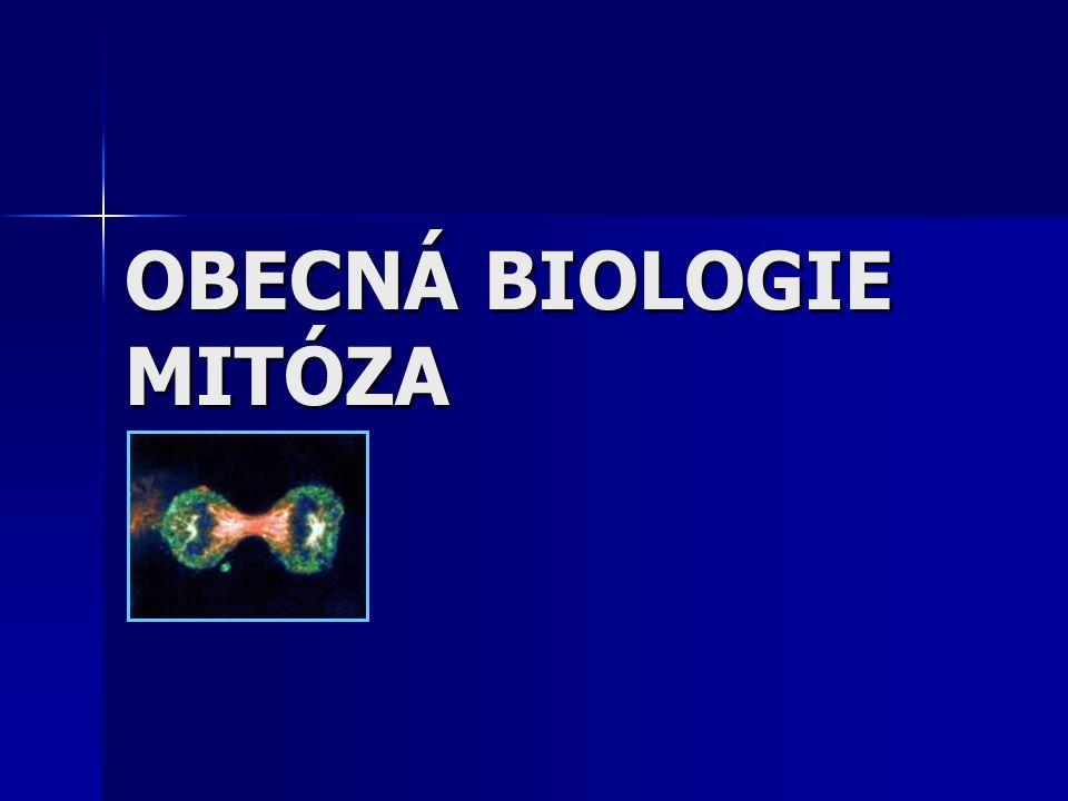 SOŠS a SOU KadaňObecná biologie - Mitóza2 Život buňky  Začíná a končí mitózou.