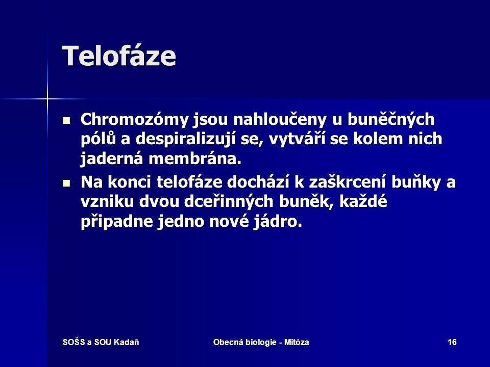 SOŠS a SOU KadaňObecná biologie - Mitóza17 Telofáze