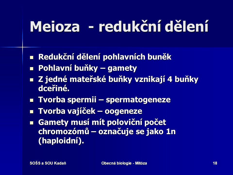 SOŠS a SOU KadaňObecná biologie - Mitóza19 Meioze Z původní mateřské buňky vznikají 4 buňky dceřiné s polovičním počtem chromozomů.