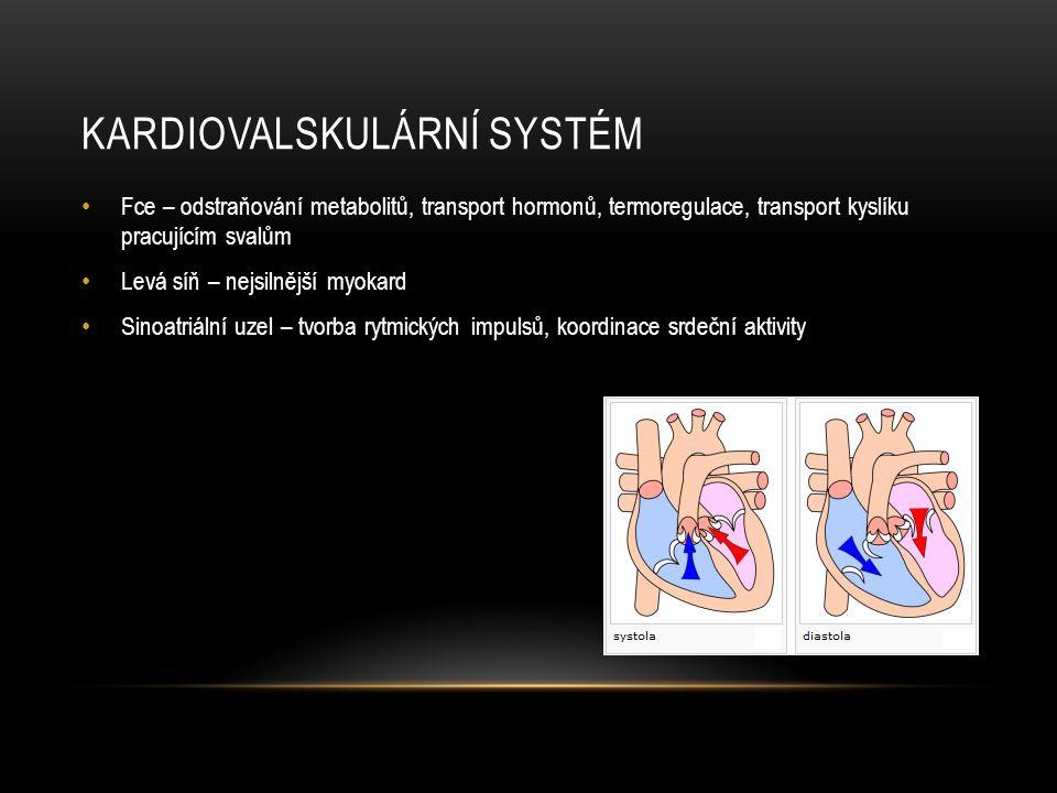 KARDIOVALSKULÁRNÍ SYSTÉM • Fce – odstraňování metabolitů, transport hormonů, termoregulace, transport kyslíku pracujícím svalům • Levá síň – nejsilněj