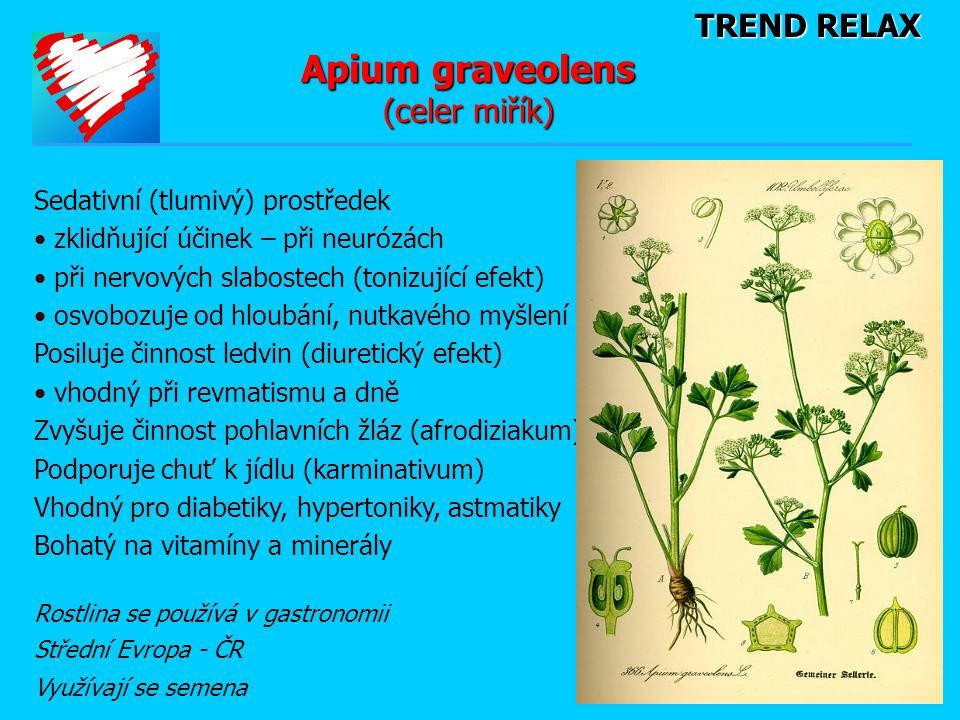 TREND RELAX Apium graveolens (celer miřík) Sedativní (tlumivý) prostředek • zklidňující účinek – při neurózách • při nervových slabostech (tonizující