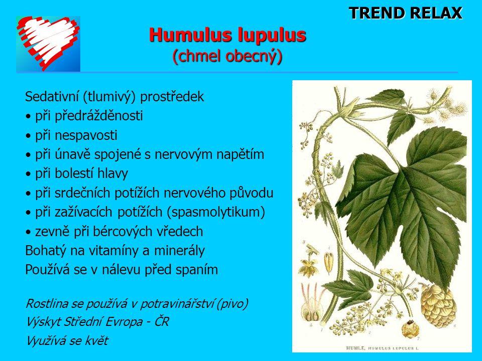 TREND RELAX Humulus lupulus (chmel obecný) Sedativní (tlumivý) prostředek • při předrážděnosti • při nespavosti • při únavě spojené s nervovým napětím