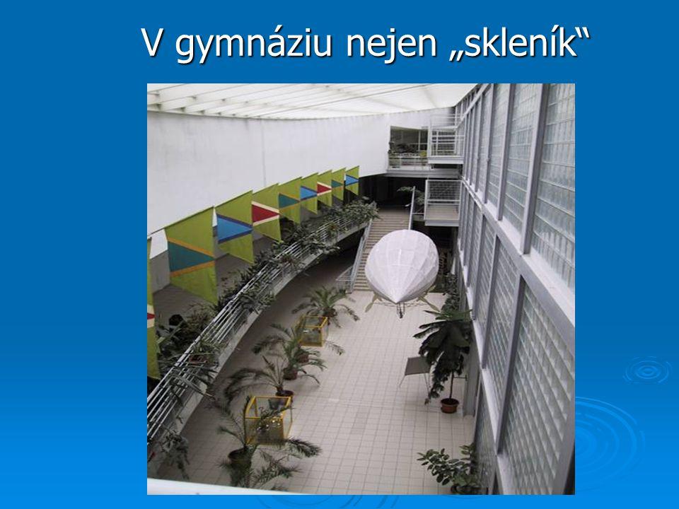 """V gymnáziu nejen """"skleník"""""""