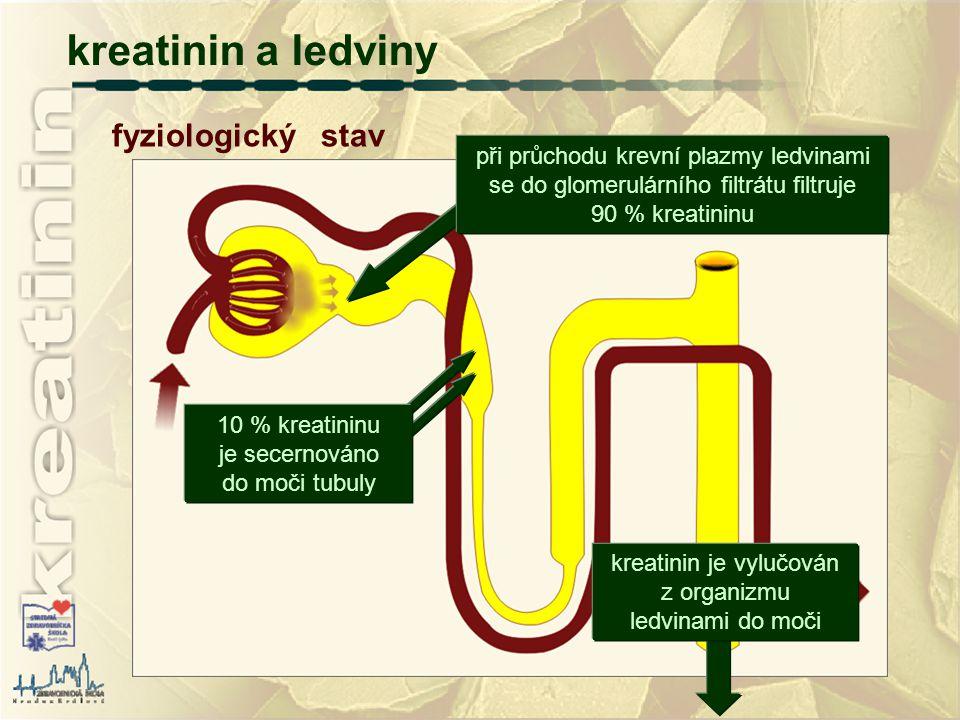 fyziologický stav kreatinin a ledviny při průchodu krevní plazmy ledvinami se do glomerulárního filtrátu filtruje 90 % kreatininu 10 % kreatininu je s