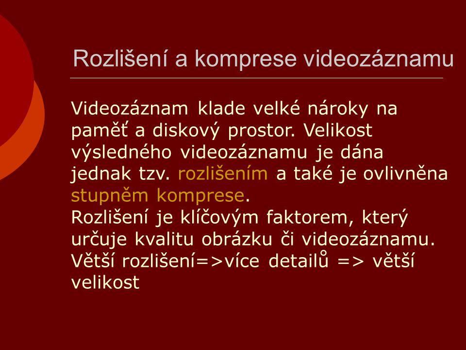Formáty videosouborů  AVI – standard digitálního videa pro Microsoft  MPG – využití při distribuci filmů na DVD  MOV – původně vyvinutý pro Apple, používají jej grafická studia  WMV – často se používá k přehrávání videa na HTML stránkách  RA – byl vyvinut jako speciální formát pro přenos videa po internetu v podobě tzv.