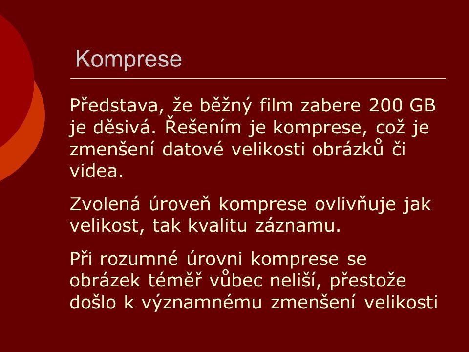 Komprese Představa, že běžný film zabere 200 GB je děsivá. Řešením je komprese, což je zmenšení datové velikosti obrázků či videa. Zvolená úroveň komp