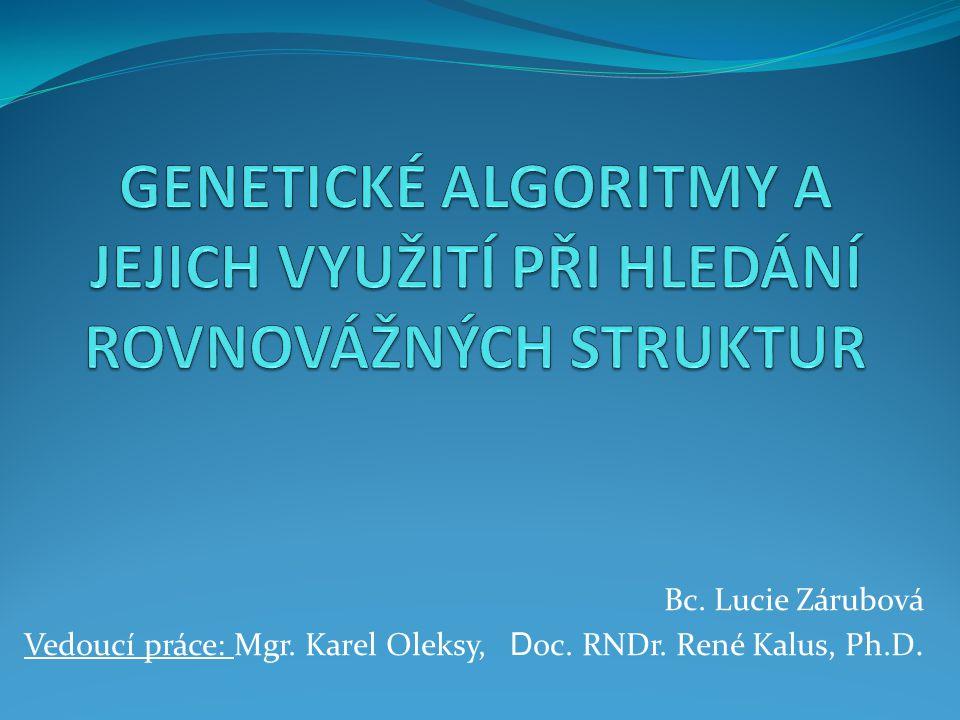 OBSAH  Cíle  Evoluční algoritmy  Genetické algoritmy  Testovaná nastavení  Závěr  Vyhlídky