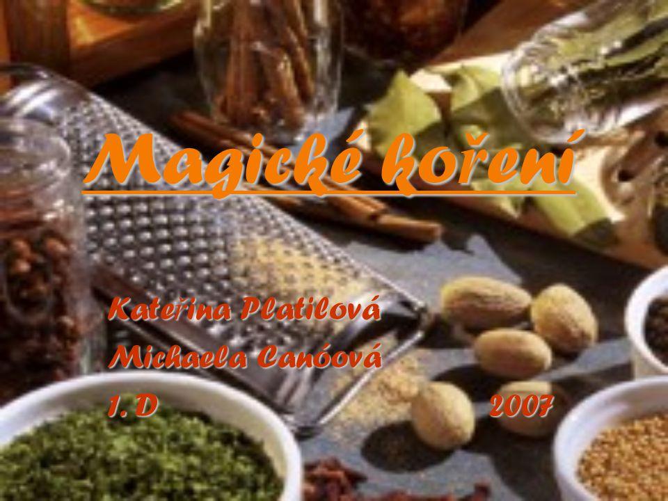 Magické ko ř ení Kate ř ina Platilová Michaela Canóová 1. D 2007