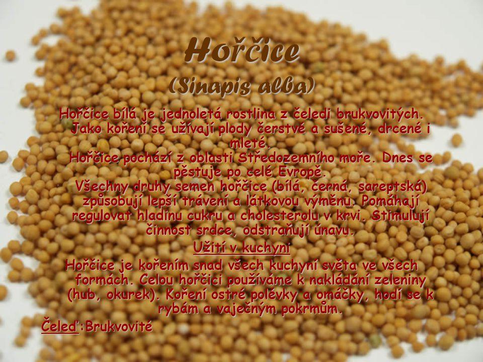 Hořčice (Sinapis alba) Hořčice bílá je jednoletá rostlina z čeledi brukvovitých. Jako koření se užívají plody čerstvé a sušené, drcené i mleté. Hořčic