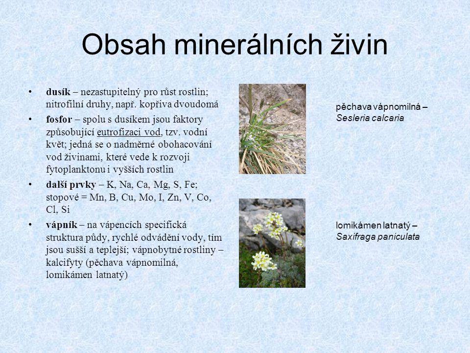 Obsah minerálních živin •dusík – nezastupitelný pro růst rostlin; nitrofilní druhy, např. kopřiva dvoudomá •fosfor – spolu s dusíkem jsou faktory způs