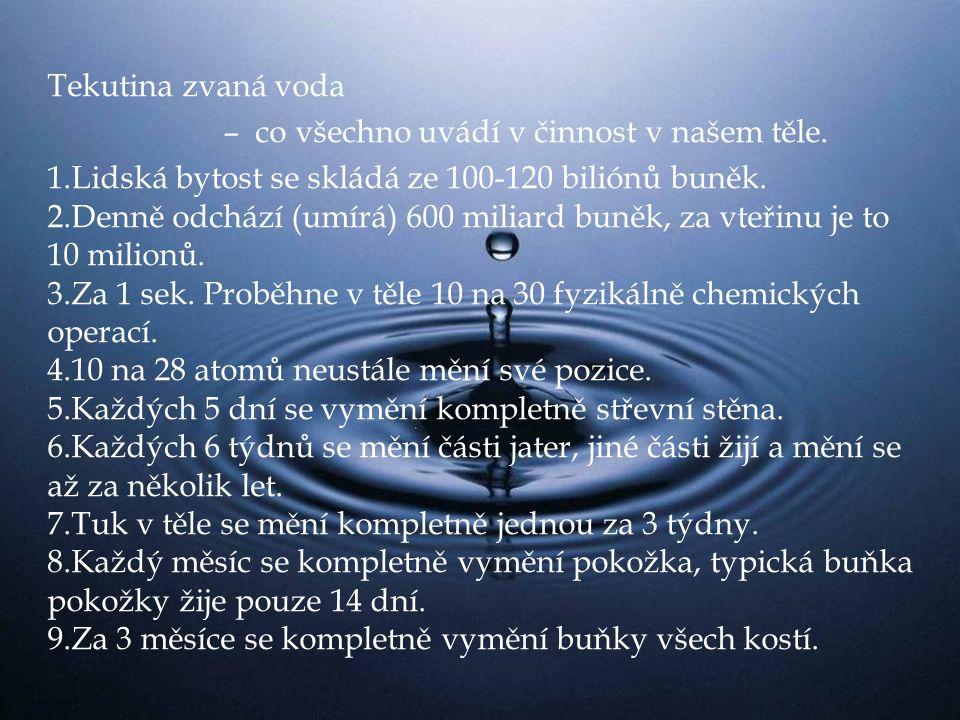 Tekutina zvaná voda – co všechno uvádí v činnost v našem těle.
