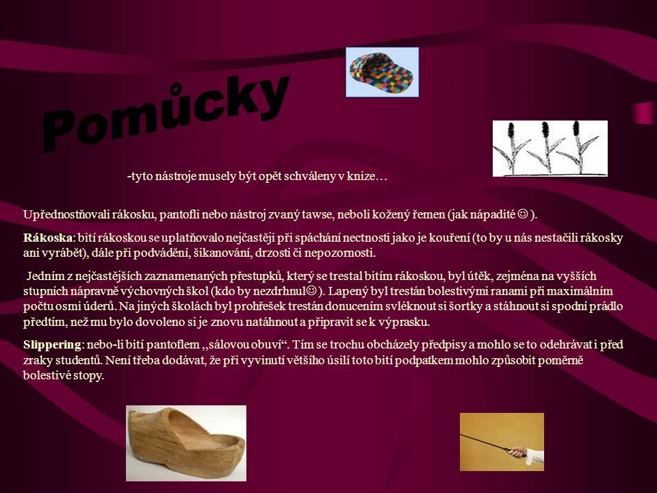 -tyto nástroje musely být opět schváleny v knize… Upřednostňovali rákosku, pantofli nebo nástroj zvaný tawse, neboli kožený řemen (jak nápadité  ).