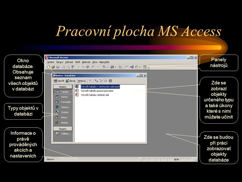 Pracovní plocha MS Access Zde se zobrazí objekty určeného typu a také úkony které s nimi můžete učinit Panely nástrojů Zde se budou při práci zobrazov