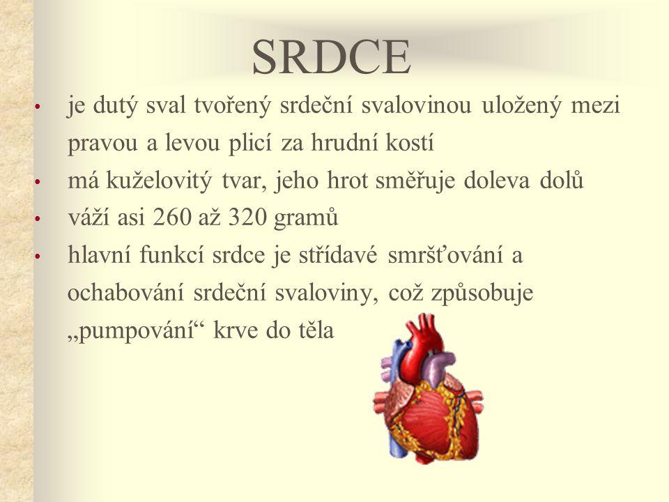 """• je dutý sval tvořený srdeční svalovinou uložený mezi pravou a levou plicí za hrudní kostí • má kuželovitý tvar, jeho hrot směřuje doleva dolů • váží asi 260 až 320 gramů • hlavní funkcí srdce je střídavé smršťování a ochabování srdeční svaloviny, což způsobuje """"pumpování krve do těla SRDCE"""