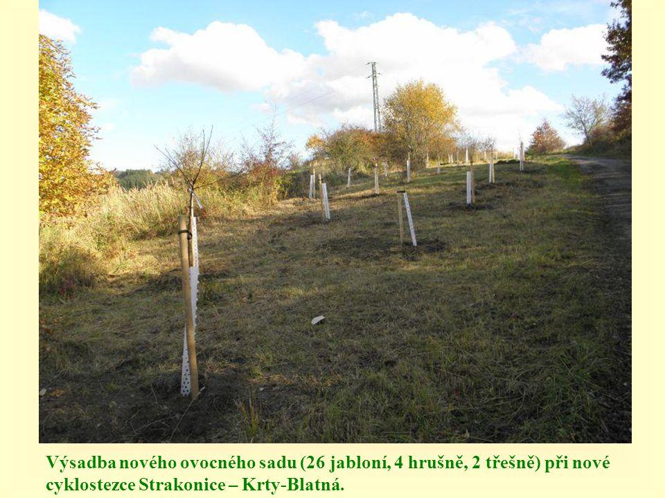 Výsadba nového ovocného sadu (26 jabloní, 4 hrušně, 2 třešně) při nové cyklostezce Strakonice – Krty-Blatná.