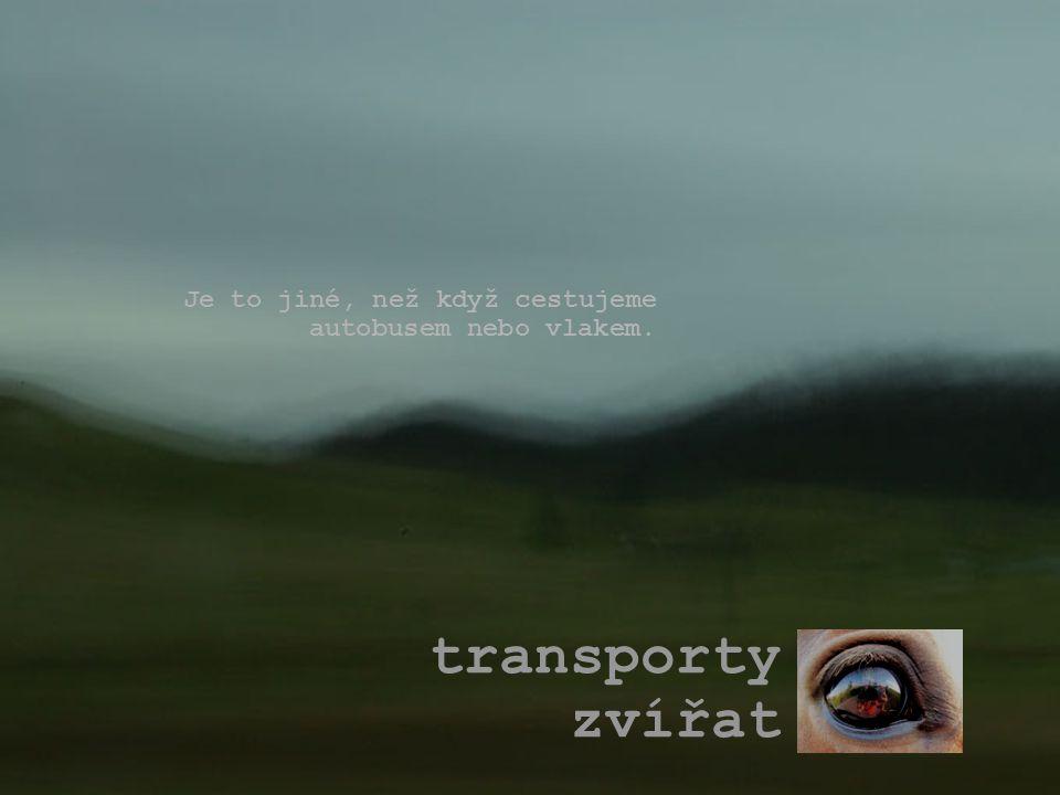 transporty zvířat Je to jiné, než když cestujeme autobusem nebo vlakem.