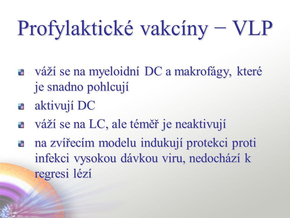 váží se na myeloidní DC a makrofágy, které je snadno pohlcují aktivují DC váží se na LC, ale téměř je neaktivují na zvířecím modelu indukují protekci proti infekci vysokou dávkou viru, nedochází k regresi lézí Profylaktické vakcíny − VLP