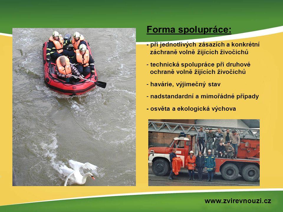 Forma spolupráce: - při jednotlivých zásazích a konkrétní záchraně volně žijících živočichů - technická spolupráce při druhové ochraně volně žijících