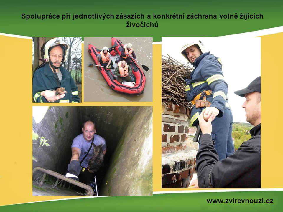 Technická spolupráce při druhové ochraně volně žijících živočichů www.zvirevnouzi.cz
