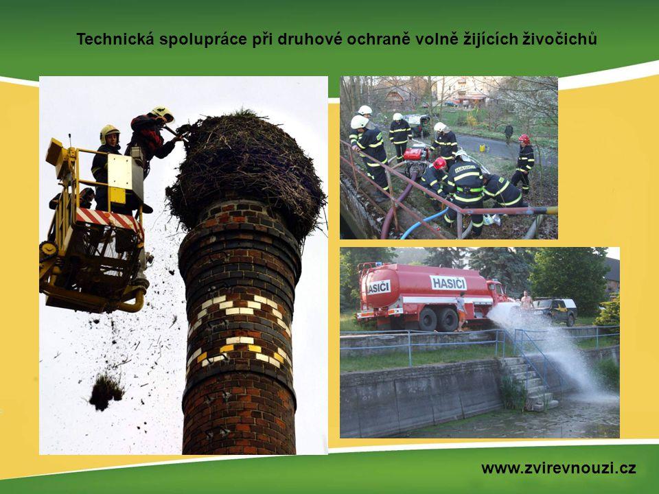 Havárie, výjimečný stav www.zvirevnouzi.cz