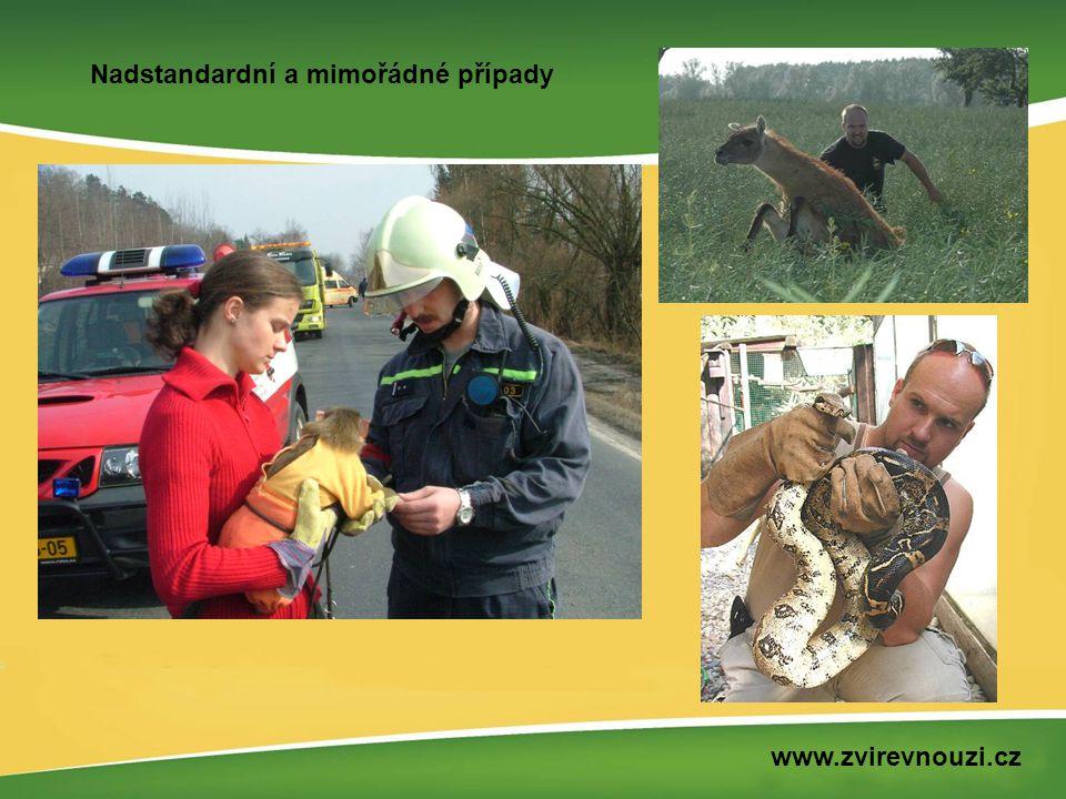 Nadstandardní a mimořádné případy www.zvirevnouzi.cz