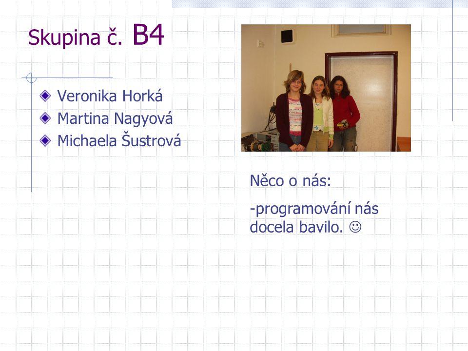 Skupina č. B4 Veronika Horká Martina Nagyová Michaela Šustrová Něco o nás: -programování nás docela bavilo. 