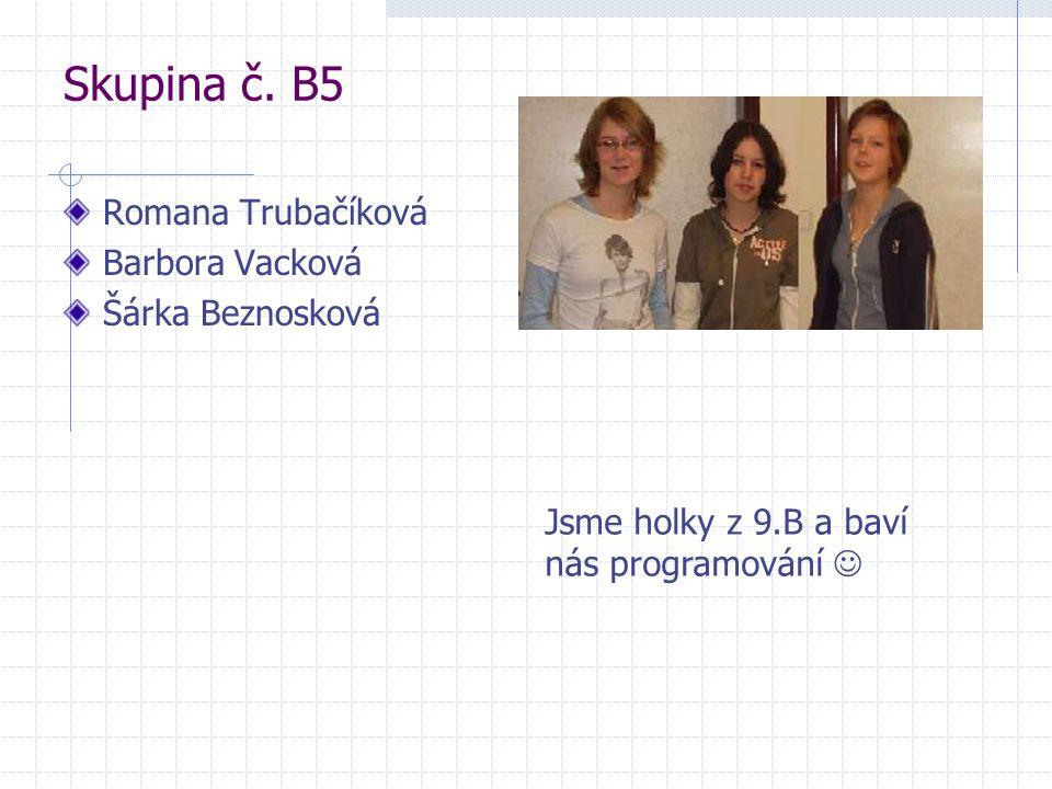 Skupina č. B5 Romana Trubačíková Barbora Vacková Šárka Beznosková Jsme holky z 9.B a baví nás programování 