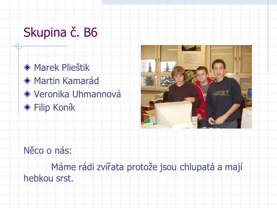 Skupina č. B6 Marek Plieštik Martin Kamarád Veronika Uhmannová Filip Koník Něco o nás: Máme rádi zvířata protože jsou chlupatá a mají hebkou srst.