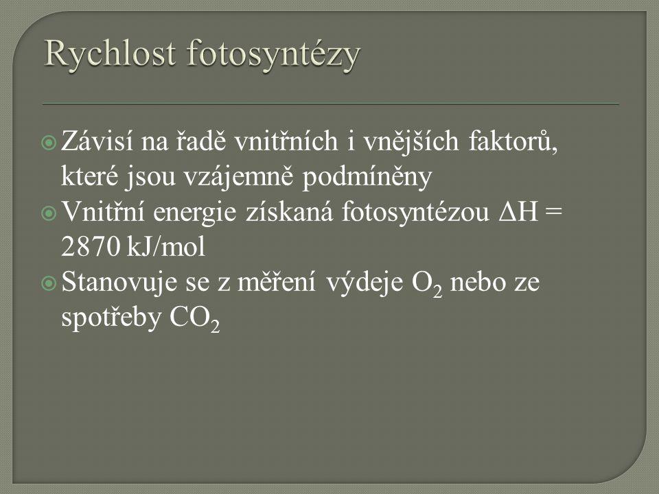  Závisí na řadě vnitřních i vnějších faktorů, které jsou vzájemně podmíněny  Vnitřní energie získaná fotosyntézou ΔH = 2870 kJ/mol  Stanovuje se z