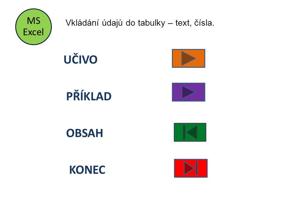 MS Excel UČIVO PŘÍKLAD OBSAH KONEC Vkládání údajů do tabulky – text, čísla.