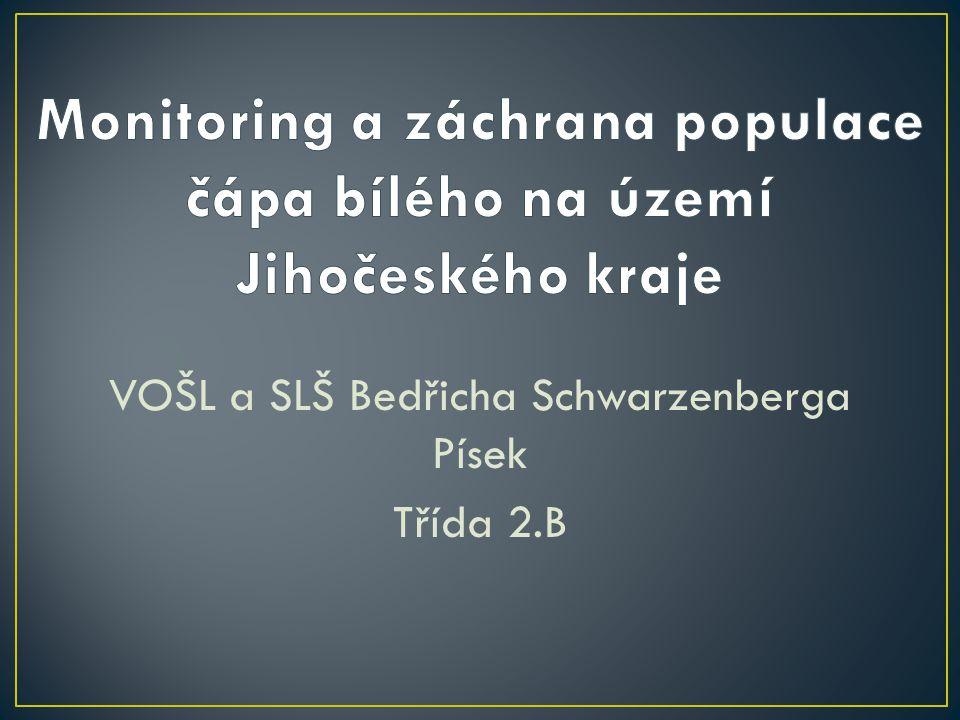 VOŠL a SLŠ Bedřicha Schwarzenberga Písek Třída 2.B