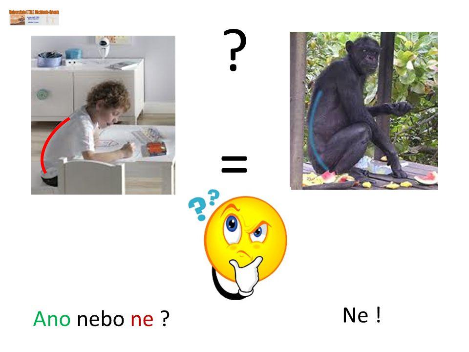 Ano nebo ne ? ? = Ne !