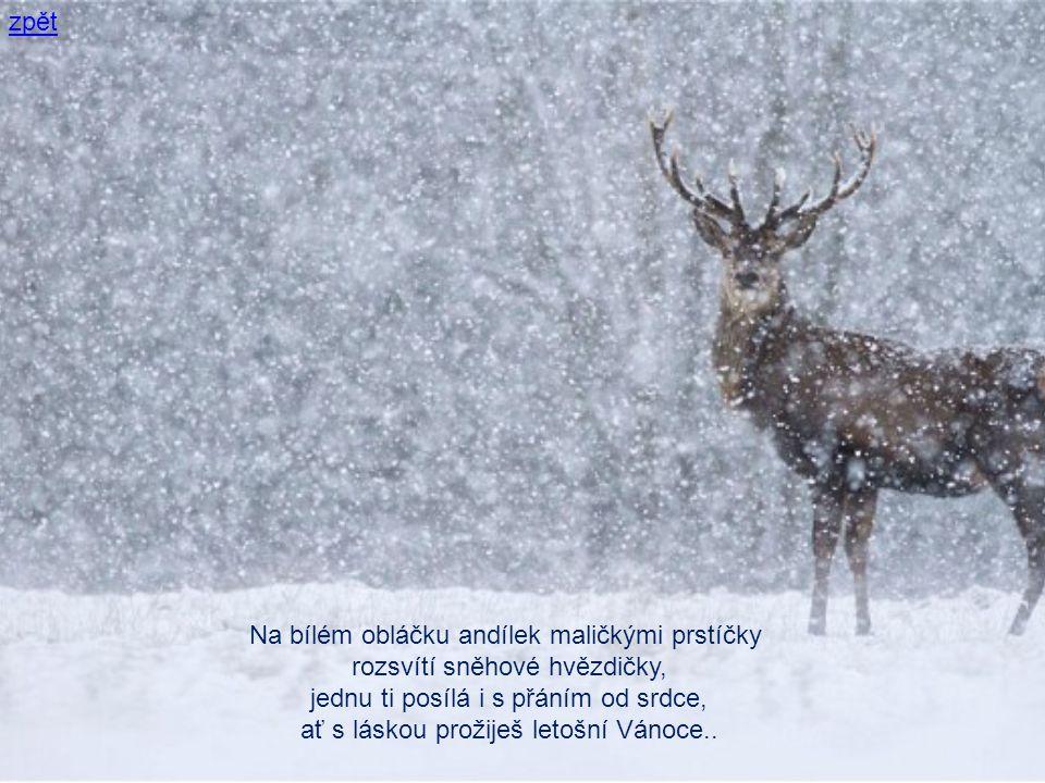 Na bílém obláčku andílek maličkými prstíčky rozsvítí sněhové hvězdičky, jednu ti posílá i s přáním od srdce, ať s láskou prožiješ letošní Vánoce..