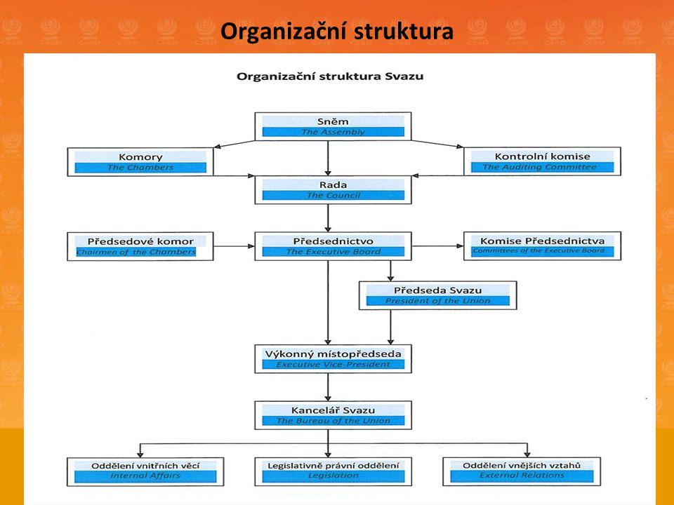 Organizační struktura 8