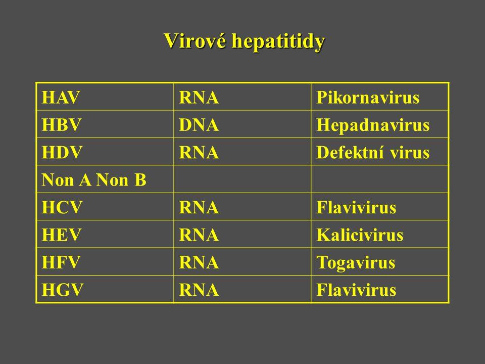 Virové hepatitidy HAVRNAPikornavirus HBVDNAHepadnavirus HDVRNADefektní virus Non A Non B HCVRNAFlavivirus HEVRNAKalicivirus HFVRNATogavirus HGVRNAFlav